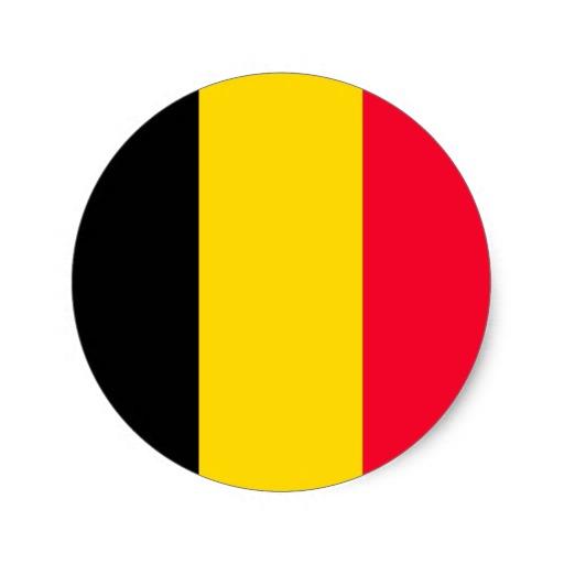 Belgique-ecole-de-commerce-de-lyon