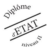 diplome-d'état-niveau-2 DCG diplôme de comptabilité gestion