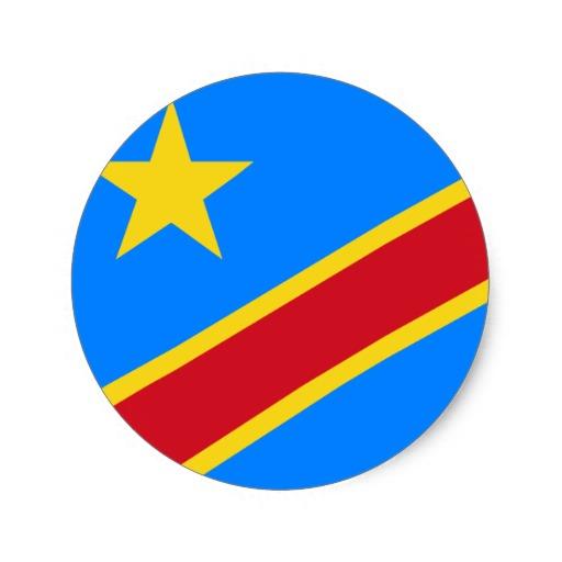 Congo Ecole de Commerce de lyon