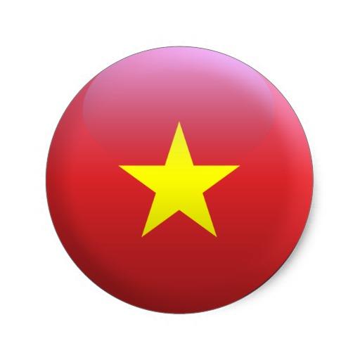 vietnam-ecole-de-commerce-de-lyon