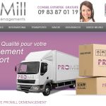 Promill-demenagement