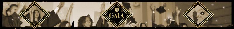 gala-ecole-de-commerce-de-lyon-cci-de-lyon-remise-de-diplome