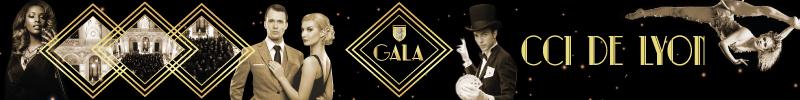 gala-ecole-de-commerce-de-lyon-cci-de-lyon