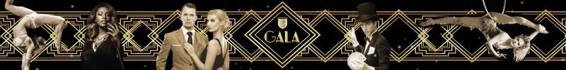 gala-ecole-de-commerce-de-lyon-spectacle