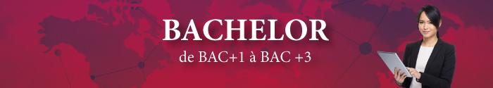 bachelor-etudes-ecoledecommercedelyon