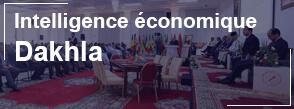 ecole de commerce de lyon dakhla intelligence économique